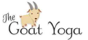 The Goat Yoga - Michigan Goat Yoga